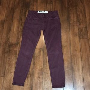 Women's Daughters of the liberation burgundy pant